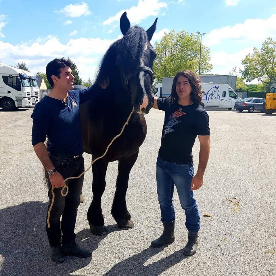 Fali, futur cheval de spectacle !