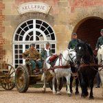Nos chevaux participent à la présentation du convoi hippomobile allemand